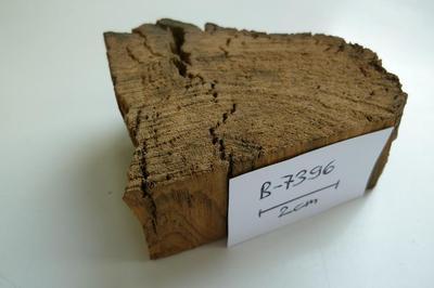 B-7396, Holz mit einem Alter von mehr als 50'000 Jahren
